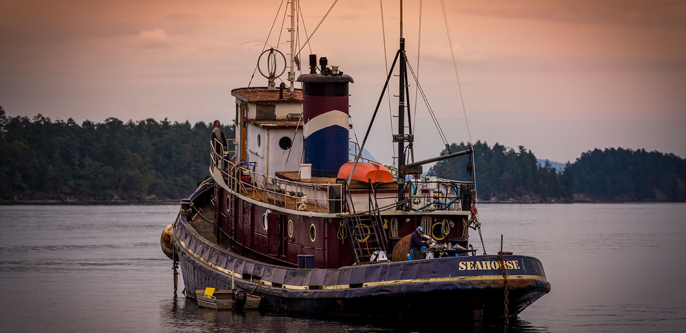 Tugboat in Salt Spring, BC