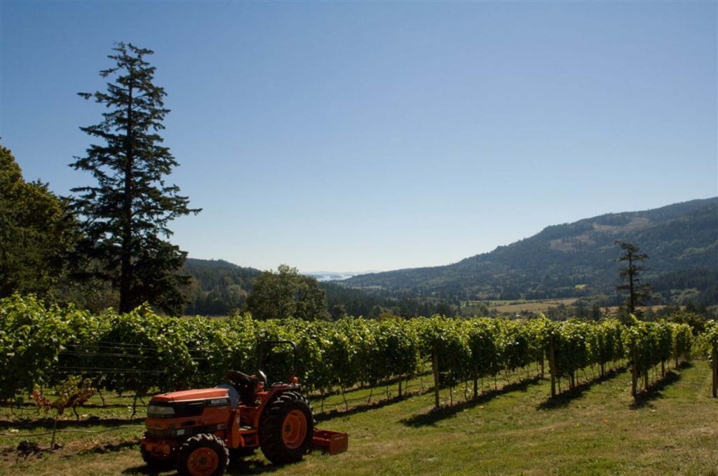 Wineries for sale in British Columbia