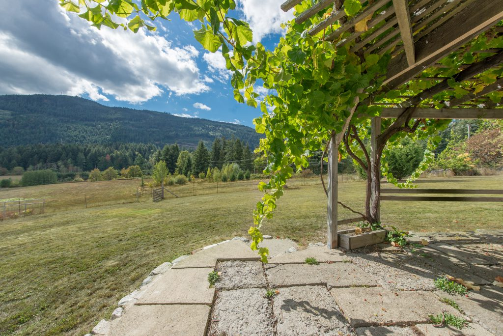 salt-spring-vineyard-24