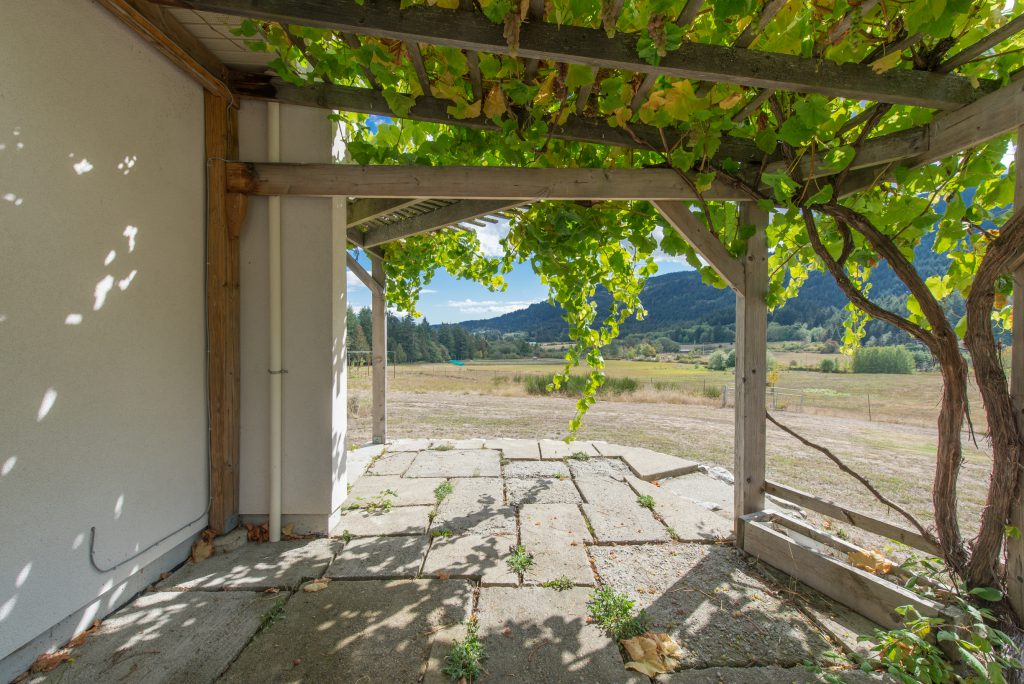 salt-spring-vineyard-27